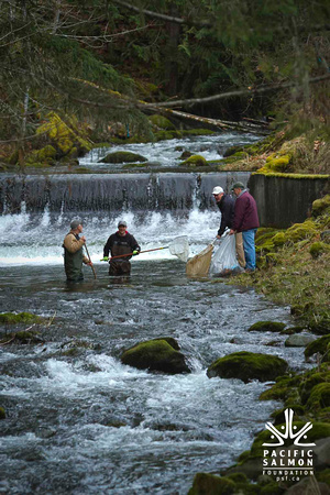 2012 Photoshoot_Goldstream River-36 - LOGO