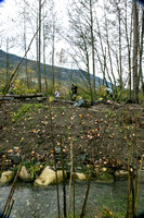 TRESTLE PLANTING - BROWNLANDS WETLAND RESTORATION PROJECT - Sombilon Photography-85